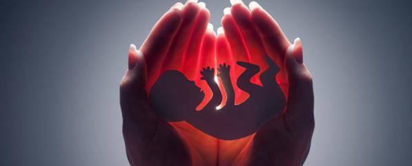 États-Unis : l'interdiction de la vente de morceaux de foetus avortés